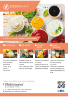 STABILIZER SYSTEMS FOR SAUCES & SEASONING