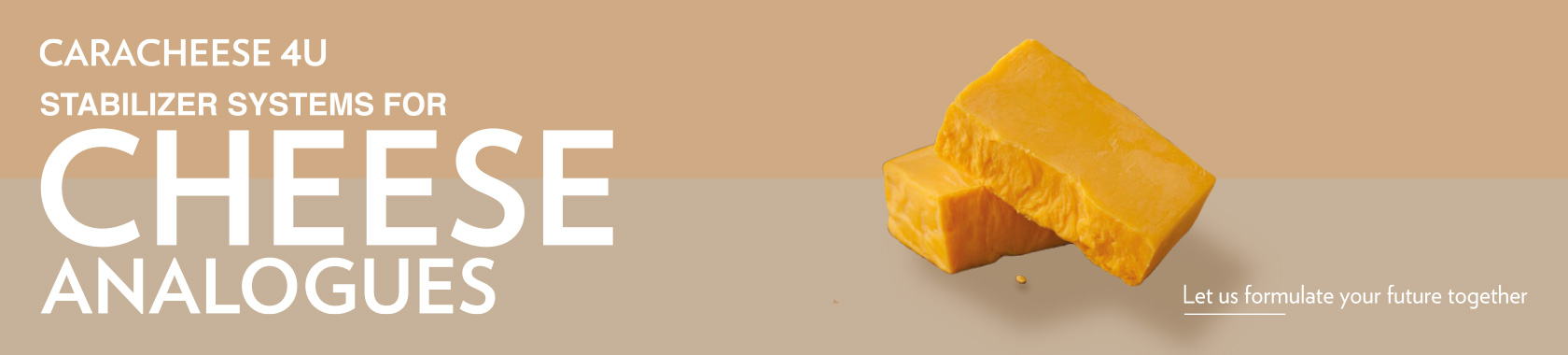 cheese analogues