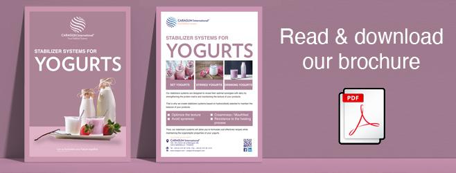 Yogurts brochure